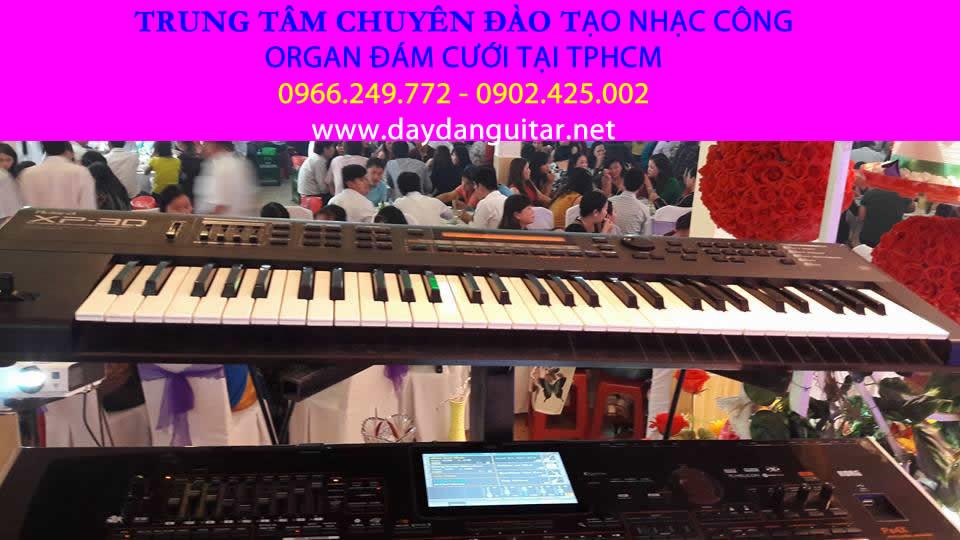 dạy đàn organ nhạc công đám cưới quận bình tân